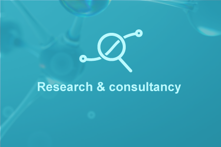 Research-consultancy-Portfolio